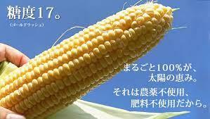 トウモロコシ 農薬