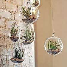 fresh hanging glass planter 2018 transpa flower plant vase candle tealight holder terrarium wedding decor home