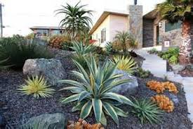 Small Picture Cactus Garden Ideas Garden ideas and garden design
