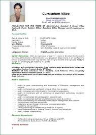 Job Resume Samples Pdf Application Middot Resume Examples Job Resume
