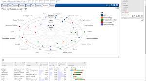 Excel Bullseye Chart Bullseye Charts With Enrich Analytics
