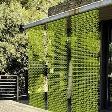 endearing outdoor privacy screens in 18 attractive for your areas lifestyle
