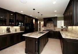 Dark Kitchen Cabinets With Light Granite Mesmerizing 48 Of The Hottest Kitchen Trends Awful Or Wonderful Laurel Home