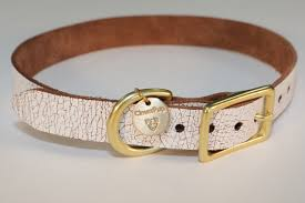 Image result for dog collars