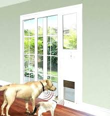 doggy door for glass door small pet door for sliding glass door best pet door for doggy door for glass