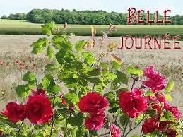 """Résultat de recherche d'images pour """"gifs des roses des jardins"""""""