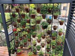 straight up vertical garden lessons