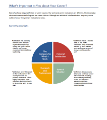 Career Success Definition Career Vectors Motivation Assessment Paul Terry Consulting
