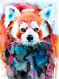 Colorful Animal Portraits By Slaveika Aladjova Designwrld