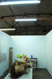 artists studio lighting. Caranne Artists Studio Lighting M