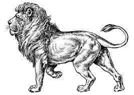 Disegno Da Colorare Leone Cat 17373 Images