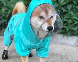 <b>Shiba inu clothes</b> | Etsy