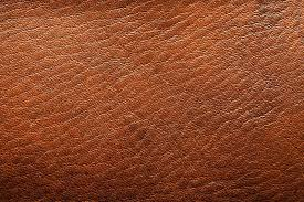 15 fun facts about leather