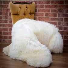 large sheepskin sheep skin rug taxidermy rugs for