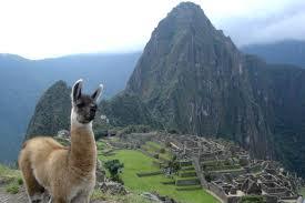 класс Хозяйственная деятельность в Перу