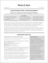 Resume With Executive Summary Executive Summary Resume Samples Resume Samples 9