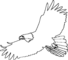 Bald eagle coloring pages for kids 2 coloring page of an eagle flying printable coloring pages design on printable coloring picture of an eagle
