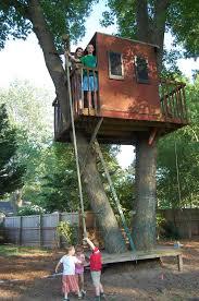 new mason39s tree services in virginia beach mason39s tree