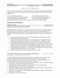 Cio Resume Best Of 51 Unique Cio Resume Sample Fresh Resume