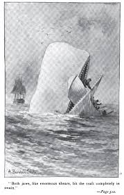 college essays college application essays moby dick essays images of moby dick essays loc us