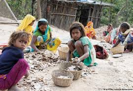 about child labour in essay coursework help about child labour in essay spooner f baker j zollers