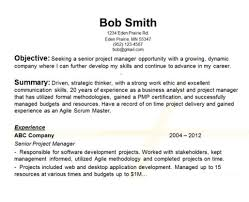 54 Career Objective Sample Resumes Expert Yierdaddc Info