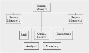 Project Organization Chart Beauteous Project Organization Chart Awesome 48 Project Organizational