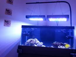 Wall Mounted Fish Tank Light How Do You Hang Your Lights Looking For Ideas