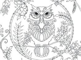 Owl Coloring Pages Owl Coloring Page Adult Club In Pages Owls For