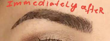microblading in chicago chicago permanent makeup by lana schluter rn bsn leading permanent makeup expert since 2008
