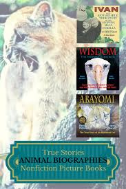 biographies nonfiction picture books about gorillas pumas albatrosses and spiders mims house children s