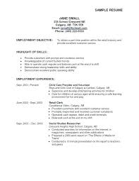 Resume Objective Samples Customer Service Perfect Resume Objective Examples Blaisewashere Com