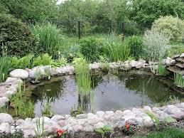 Elegant Backyard Pond Landscaping Ideas Backyard Small Ponds In Backyard