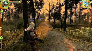 Image result for The Witcher: Enhanced Edition Director's Cut pc