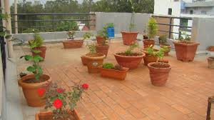 Small Picture Balcony Garden Design Ideas India DESJAR Interior The Inspire