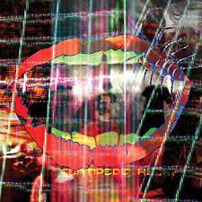 <b>Centipede</b> Hz by <b>Animal Collective</b> on Amazon Music - Amazon.com