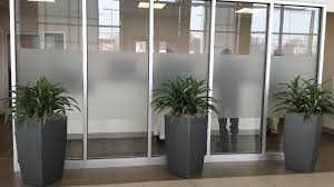 office plant displays. Exellent Office Photo Photo3 Photo4 Photo5 Photo2 With Office Plant Displays T