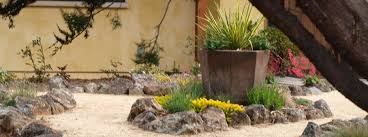 Small Picture Drought Tolerant Landscape