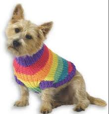 Free Knitted Dog Sweater Patterns Magnificent Free Dog Sweater Knitting Pattern