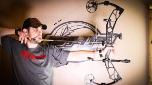 Elite Archery Bow Reviews Option 7 And Tempo