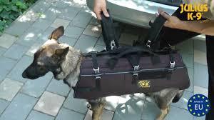Die tragehilfe wird auch sehr gerne für hunde im physiotherapeutischen bereich eingesetzt. Rucksackartiges Abseil Und Tragegeschirr Kode 16600 M Youtube