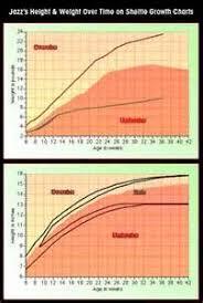 31 Unbiased Sheltie Size And Weight Chart