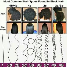 Black Natural Hair Types Chart Most Common Hair Types In Black Hair Natural Hair Styles
