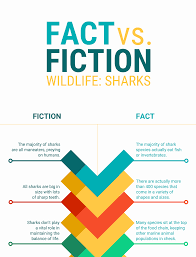 Comparison Infographic Template 9 Types Of Infographics And When To Use Them Infographic