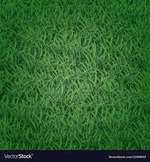artificial grass texture. Seamless Grass Texture Vector Image Artificial