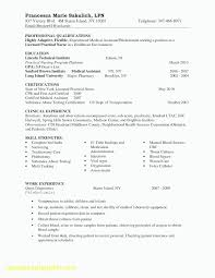 Resume Template Usa Professional Resume Template Usa It Resumes