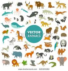 all animals in the world pictures. Simple The Collection Of Animals The World Vector Illustration Simple Cartoon  Animal Icons With All In The World Pictures A