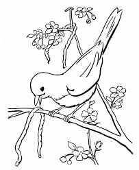 Small Picture 39 best Tracys coloring book of animals images on Pinterest