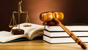 Image result for career guidance lawyer