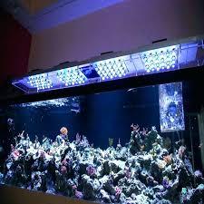 awesome led lights for for led aquarium lights for marine aquarium led lights for